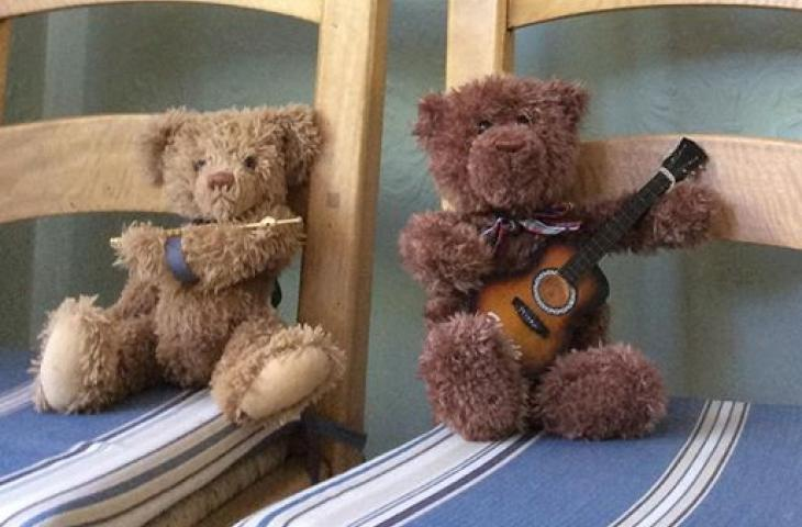 teddies cropped
